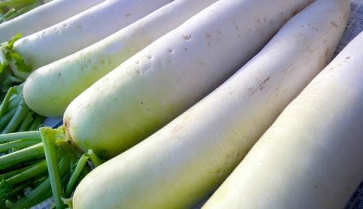 ペニスを太くして伸ばすための根本的な方法について-本当に効果のある増大サプリや巨根成分は存在するのか?-